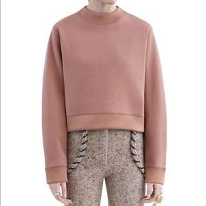 Acne women's bird sweatshirt dusty pink SZ M